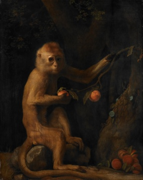 George_Stubbs_-_A_Monkey_-_Google_Art_Project