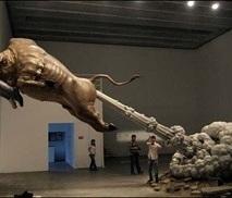 Winner: The Bull