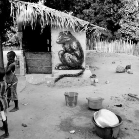 ROA-2011-The Gambia-WOW-picture by Jonx-IMG_1886_1000