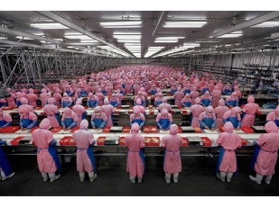 Andreas Gursky 01