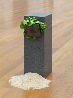 Giovanni Anselmo - Eating sculpture