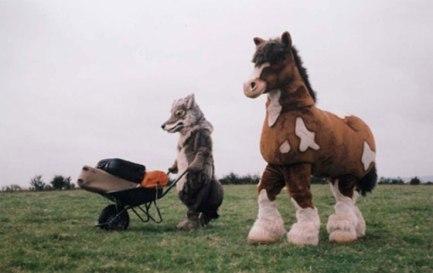 horse-&-dog