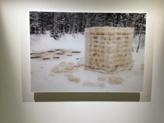 Lake Deconstruction (2011) - IMG_3901