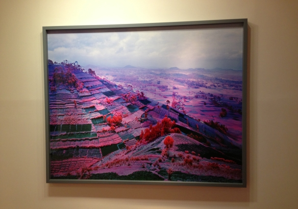 Richard Mosse - IMG_2801