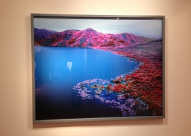 Richard Mosse - IMG_2802