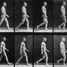 Eadweard Muybridge Man Walking