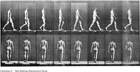 Eadweard Muybridge s2u_05_man-walk