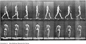 Eadweard Muybridge s2u_05_man-walk
